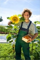 How to Grow Sunflowers by Kimba Welch