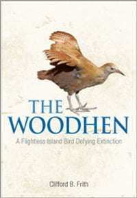 The Woodhen: A Flightless Island Bird Defying Extinction