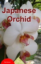 Japanese Orchid by Rei Kimura