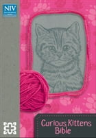 Curious Kittens Bible by Zondervan