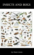 Insects and Bugs by Owen Jones