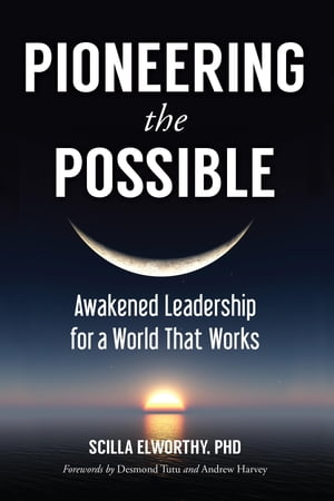 Pioneering the Possible Awakened Leadership for a World That Works