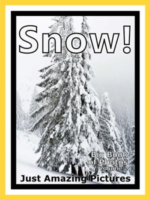 Just Snow Photos! Big Book of Photographs & Pictures of Snow,  Vol. 2