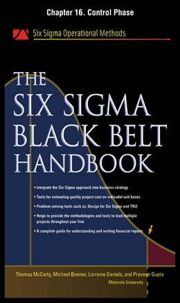 Book The Six Sigma Black Belt Handbook, Chapter 16 - Control Phase by John Heisey