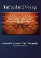 Timberland Voyage: Abstract Symmetry Tree Art Photography by John Williams