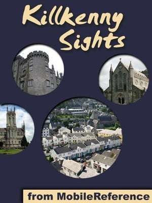 Kilkenny Sights: a travel guide to the top 20 attractions in Kilkenny, Ireland (Mobi Sights)
