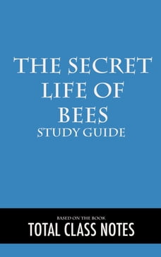 short summary of the secret life of bees