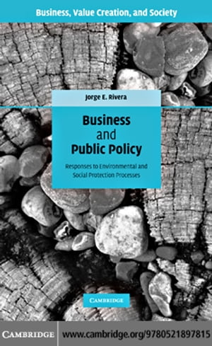 Business and Public Policy