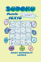 Sudoku Puzzle 16X16, Volume 3 by YobiTech Consulting