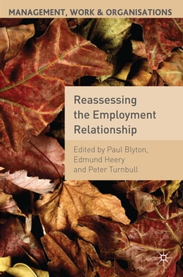 Book Reassessing the Employment Relationship by Professor Paul Blyton