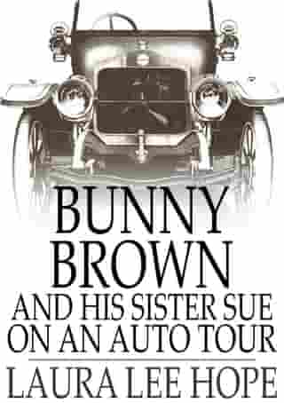 Bunny Brown and His Sister Sue on an Auto Tour by Laura Lee Hope