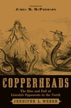 Copperheads: The Rise and Fall of Lincoln's Opponents in the North by Jennifer L. Weber