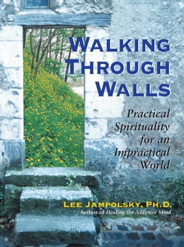 Book Walking Through Walls: Practical Spirituality in an Impractical World by Lee L. Jampolsky