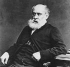Can You Forgive Her? First of the Palliser Novels by Anthony Trollope