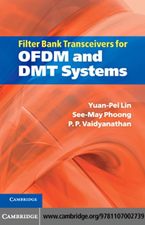 Filter Bank Transceivers for OFDM and DMT Systems