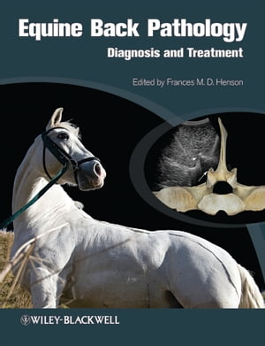 Equine Back Pathology Diagnosis and Treatment