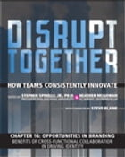 Opportunities in Branding - Benefits of Cross-Functional Collaboration in Driving Identity (Chapter 16 from Disrupt Together) by Stephen Spinelli Jr.