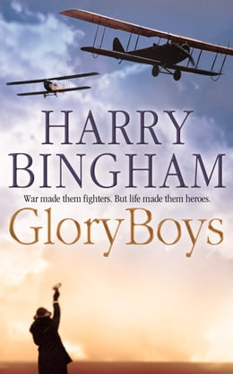 Book Glory Boys by Harry Bingham