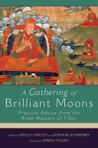 A Gathering of Brilliant Moons Cover Image