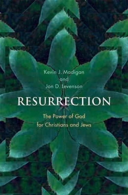Book Resurrection: The Power of God for Christians and Jews by Madigan, Kevin J.