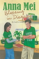Anna Mei, Blessing in Disguise by Carol A. Grund