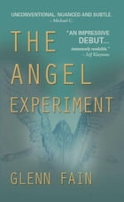 The Angel Experiment by Glenn Fain