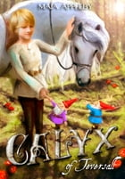 Calyx of Teversall by Maia Appleby