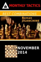 Best Combinations - November 2014 by Roman Jiganchine