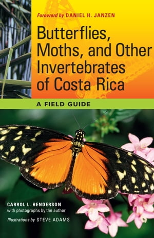 Butterflies,  Moths,  and Other Invertebrates of Costa Rica A Field Guide