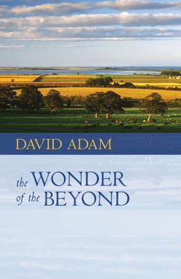 Book Wonder of the Beyond, The by David Adam