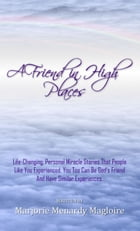 A Friend In High Places by Marjorie Menardy Magliore