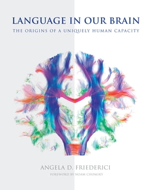 Language in Our Brain: The Origins of a Uniquely Human Capacity by Angela D. Friederici
