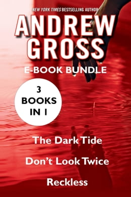 Book The Andrew Gross: The Dark Tide, Don't Look Twice, and Reckless by Andrew Gross