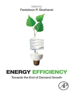 Energy Efficiency Towards the End of Demand Growth