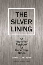 Silver Lining: Your Guide to Innovating in a Downturn