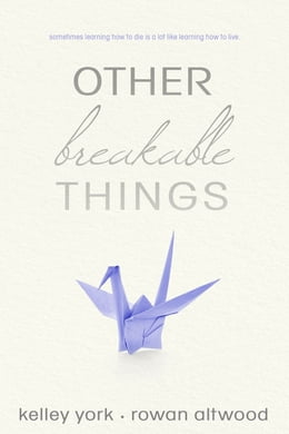 Book Other Breakable Things by Kelley York