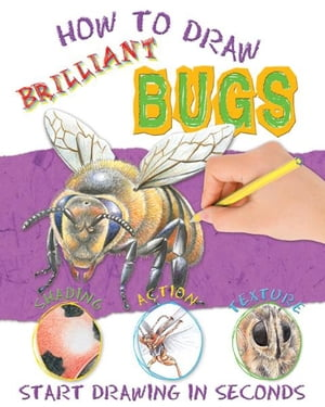How to Draw Brilliant Bugs by Miles Kelly