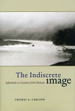Book The Indiscrete Image: Infinitude and Creation of the Human by Thomas A. Carlson