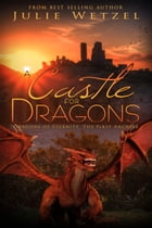 A Castle for Dragons by Julie Wetzel