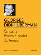 Grisalha: Poeira e poder do tempo by Georges Didi-Huberman