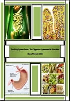 The Body System Series: The Digestive System and its Functions by Alana Monet-Telfer