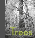The Power of Trees 77a2150a-eb30-45d8-8492-2fc700a5396c