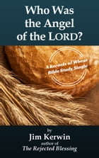 Who Was the Angel of the LORD? by Jim Kerwin