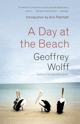Book A Day at the Beach: Recollections by Geoffrey Wolff