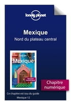 Mexique 12 - Nord du plateau central by Lonely Planet