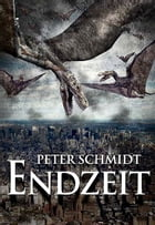 Endzeit by Peter Schmidt