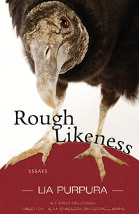 Rough Likeness: Essays