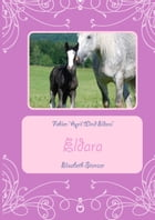 "Fohlen ""April Wind Eldara"" by Elisabeth Stanzer"