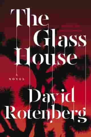 The Glass House: Third Book of the Junction Chronicles by David Rotenberg