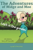 Lost in the garden: a peek-a-boo book by Kerry McQuaide